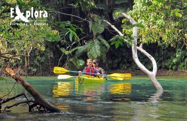 Kayak Selva